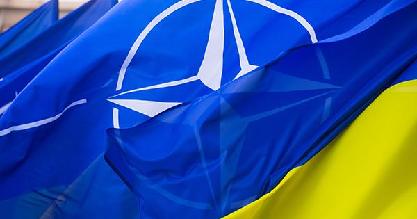 Ukrayina Nato
